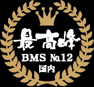 宮崎牛BMSNO12 石川精肉店